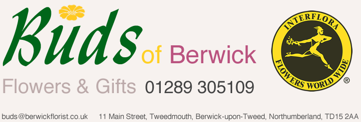 Buds of Berwick florists